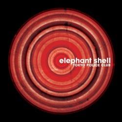 11426-elephant-shell